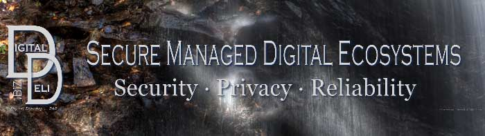 DigitalDeli.biz Properties & Brands Imprint, Secure Managed Digital Ecosystems
