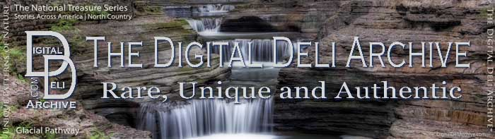 DigitalDeliArchive.com Properties & Brands Imprint, Rare, Unique and Authentic